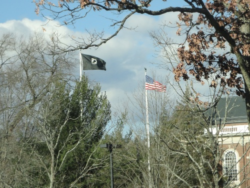 DSC02075 flags horizontal pix